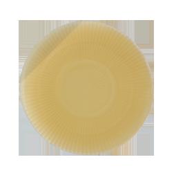 Coloplast 14307 - Easiflex Pediatric Baseplate