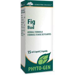 Genestra Fig Bud 15 ml Liquid Canada